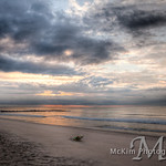 201211x14%20IMG 6228 29 30 Th Buy Jersey Shore Prints and Calendars 